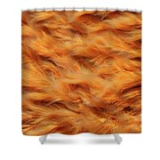 Ferrous Water Stream Shower Curtain by Gaspar Avila