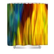 Fire And Water Shower Curtain by Amy Vangsgard