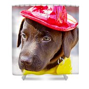Firefighter Pup Shower Curtain by Toni Hopper