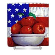 Flag And Apples Shower Curtain by Linda Mears