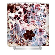 Floral Essence Shower Curtain by Frank Tschakert