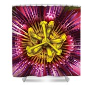 Flower - Intense Passion  Shower Curtain by Mike Savad