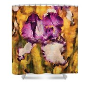Flower - Iris - Diafragma Violeta Shower Curtain by Mike Savad