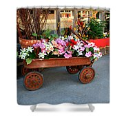Flower Wagon Shower Curtain by Perry Webster