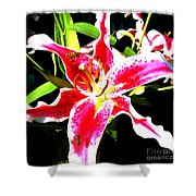Flowers And Bees Shower Curtain by Jerome Stumphauzer