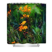 Flowers in the Woods at the Haciendia Shower Curtain by David Lane