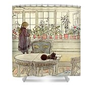 Flowers On The Windowsill Shower Curtain by Carl Larsson