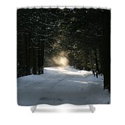 Flying Angel No.2 Shower Curtain by Neal  Eslinger