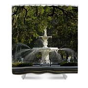 Forsyth Fountain 1858 Shower Curtain by David Lee Thompson