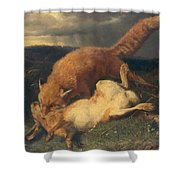Fox And Hare Shower Curtain by Johann Baptist Hofner