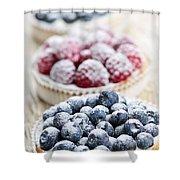 Fresh Berry Tarts Shower Curtain by Elena Elisseeva