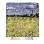Freshly Mown Hay  Shower Curtain by John Trax