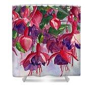 Fuchsia Frenzy Shower Curtain by Lynne Reichhart