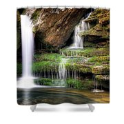 Garden of Eden Shower Curtain by Tamyra Ayles