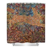 Ghost of a Rabbit Shower Curtain by James W Johnson