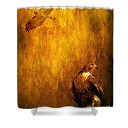 Golden Hawk 4 Shower Curtain by Wingsdomain Art and Photography