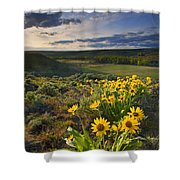 Golden Hills Shower Curtain by Mike  Dawson