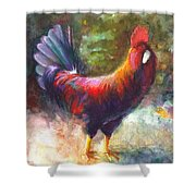 Gonzalez the Rooster Shower Curtain by Talya Johnson