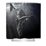 Graceful Descent Shower Curtain by Marco Antonio Aguilar