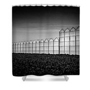 Greenhouse Shower Curtain by Dave Bowman