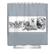 Growing Up Chinese Shar-pei Shower Curtain by Barbara Keith