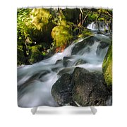 Hanson Falls Shower Curtain by Larry Ricker