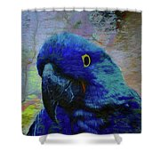He Just Cracks Me Up Shower Curtain by Jan Amiss Photography