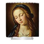 Head Of The Madonna Shower Curtain by Il Sassoferrato