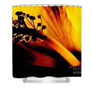 Heat Shower Curtain by Linda Shafer