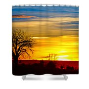 Here Comes The Sun Shower Curtain by James BO  Insogna