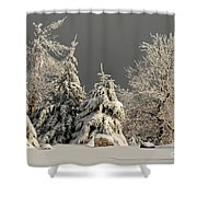 Here Comes The Sun Shower Curtain by Lois Bryan