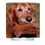Here To Serve Shower Curtain by Skip Willits