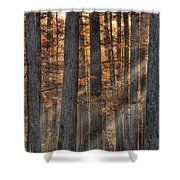 Heron Pond Morning Mist Shower Curtain by Steve Gadomski