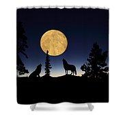 Hidden Wolves Shower Curtain by Shane Bechler
