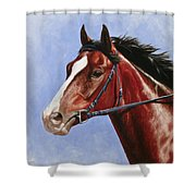 Horse Painting - Determination Shower Curtain by Crista Forest