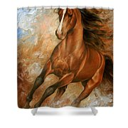 Horse1 Shower Curtain by Arthur Braginsky