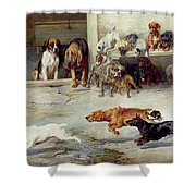 Hot Pursuit Shower Curtain by William Henry Hamilton Trood