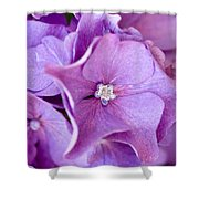 Hydrangea Shower Curtain by Frank Tschakert