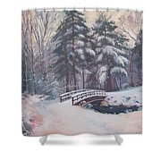 Icy Stream Shower Curtain by Dianne Panarelli Miller