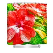 Impatiens Flower Shower Curtain by Lanjee Chee