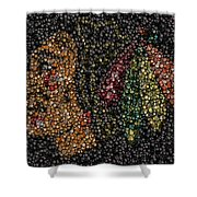 Indian Hockey Puck Mosaic Shower Curtain by Paul Van Scott