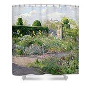 Irises In The Herb Garden Shower Curtain by Timothy Easton
