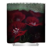It's A Heartache Shower Curtain by Laurie Search