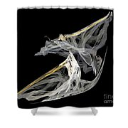 Japanese Aikido Warriors Shower Curtain by Ed Churchill