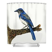 Jay Shower Curtain by Shari Nees