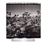 Joshua Tree Forest St George Utah Shower Curtain by Steve Gadomski