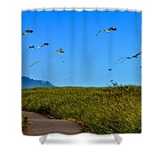 Kites Shower Curtain by Robert Bales