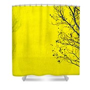 Krishna Shower Curtain by Skip Hunt
