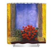 La  Finstra Con  I Fiori Shower Curtain by Mary Erbert