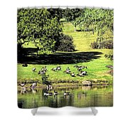 Last Days Of Summer Shower Curtain by Gaby Swanson